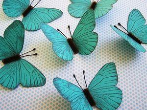 Butterflies_gift