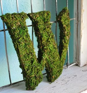 Moss_letters