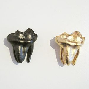 Pewter tooth