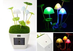 Kinoko-mushroom-usb-desk-lamp-1