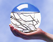 Ecosphere1