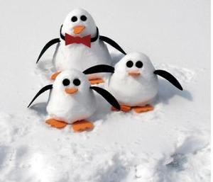 Baby_penguin