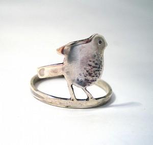 Bird_ring1