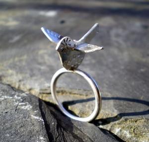Bird_ring2