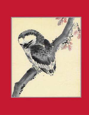 Card_owl
